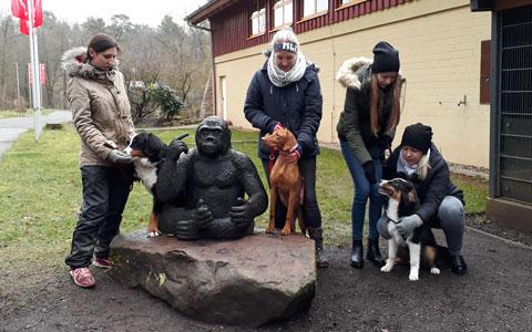 Zoobesuch der Welpengruppe – März 2018
