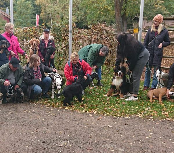 Zoobesuch der Welpengruppe – Oktober 2019