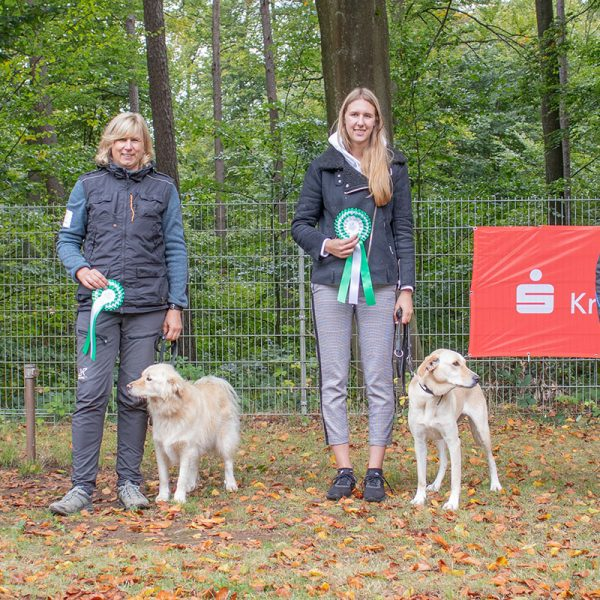 Rally-Obedience Kreisgruppenmeisterschaft KG01 – Oktober 2019